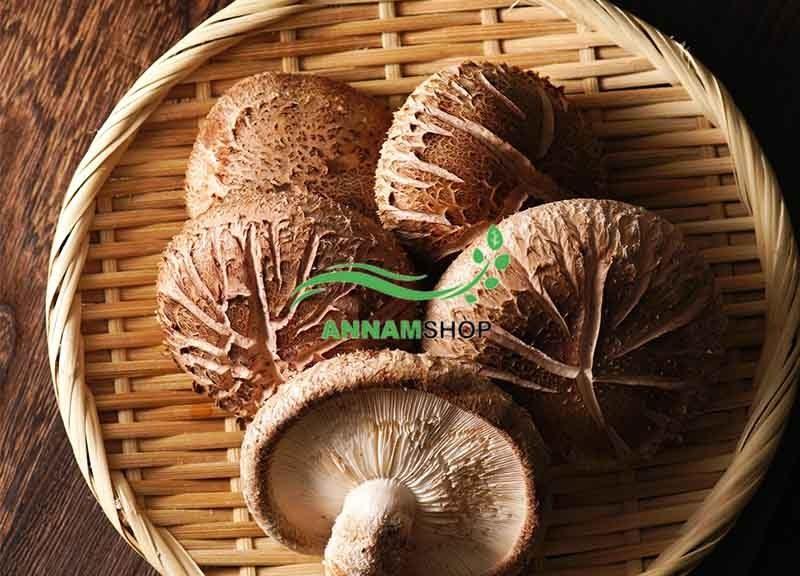 Shiitake mushroom là nấm gì