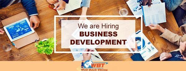 Business development executive là gì