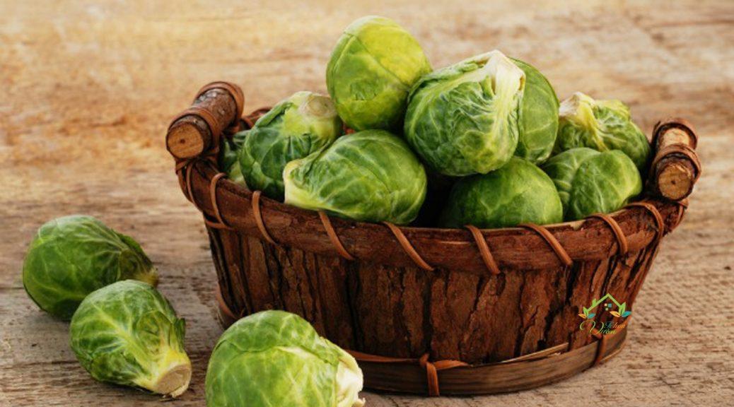 Brussel sprouts là gì