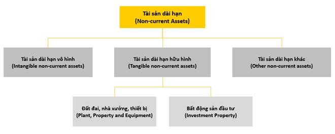Non-current assets là gì