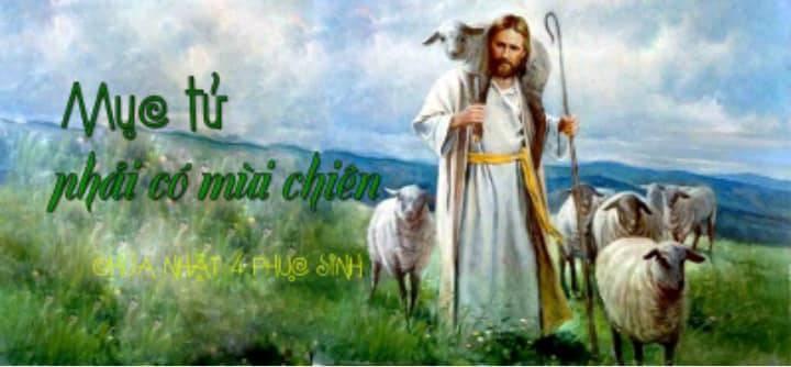 Con chiên là gì