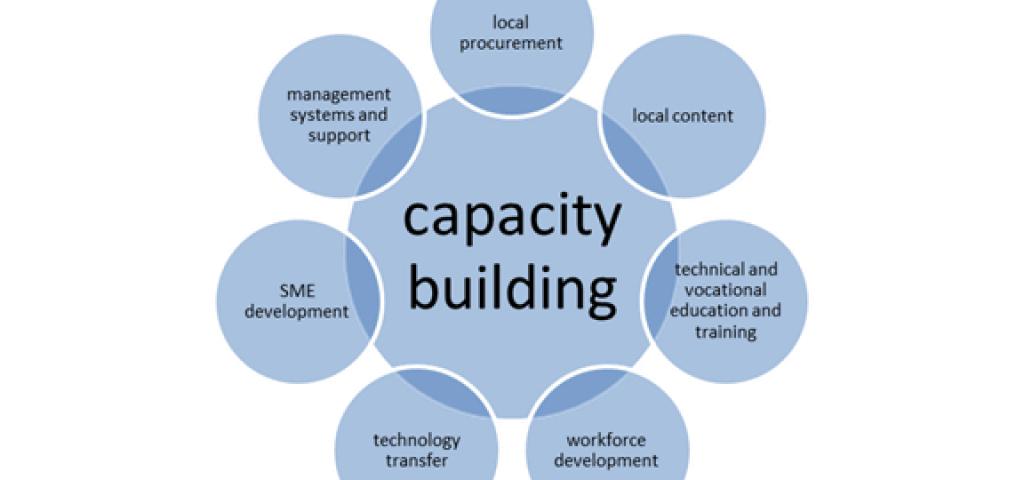 Capacity building là gì