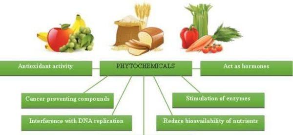 Phytochemicals là gì