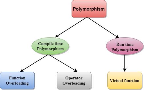 Polymorphism là gì