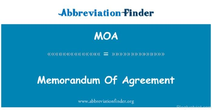 Memorandum of association là gì