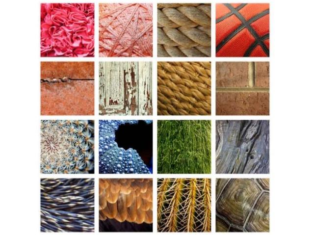 Texture là gì