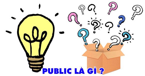 Public là gì