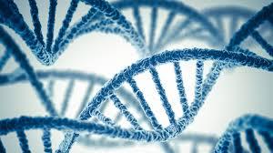 Genomics là gì