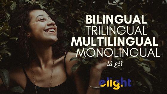 Polyglot là gì