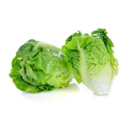 Lettuce là gì