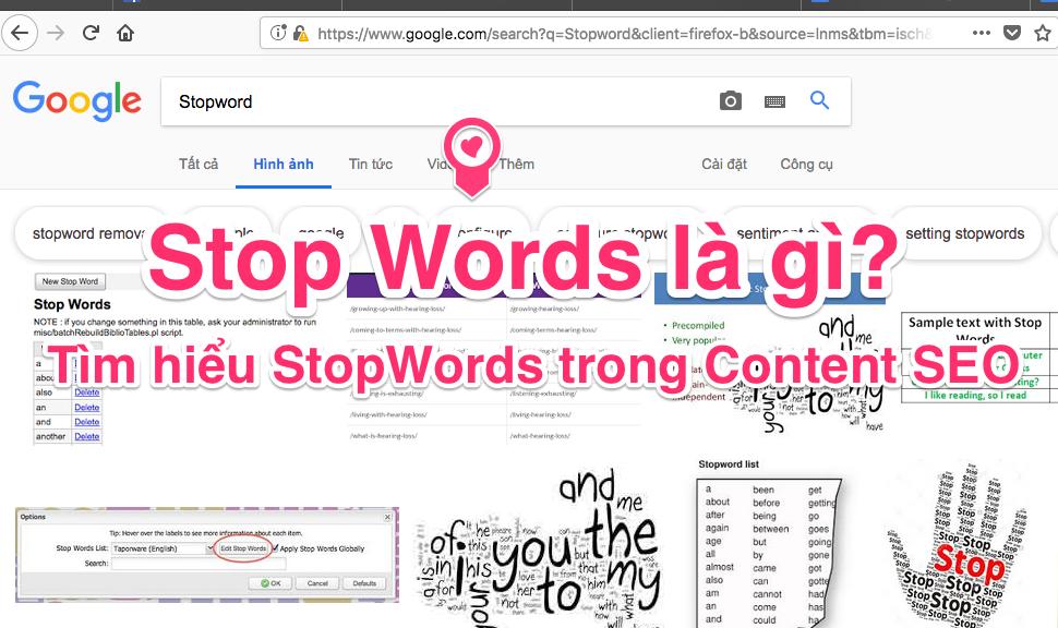 Stop word là gì