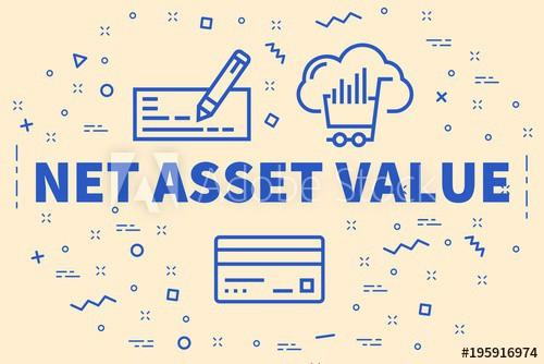 Net asset là gì