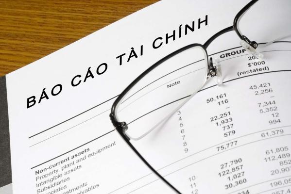 Báo cáo tài chính riêng là gì