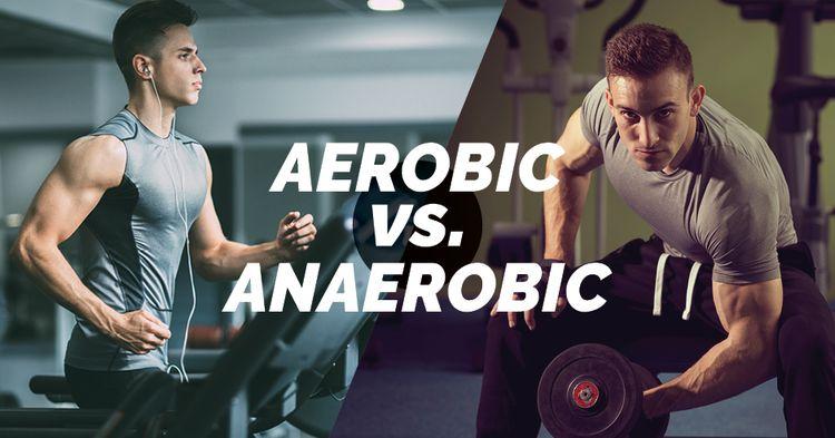 Anaerobic là gì