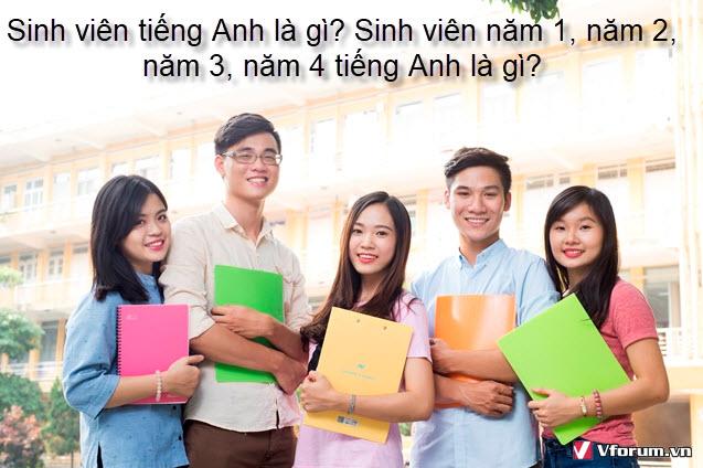 Sinh viên tiếng anh là gì