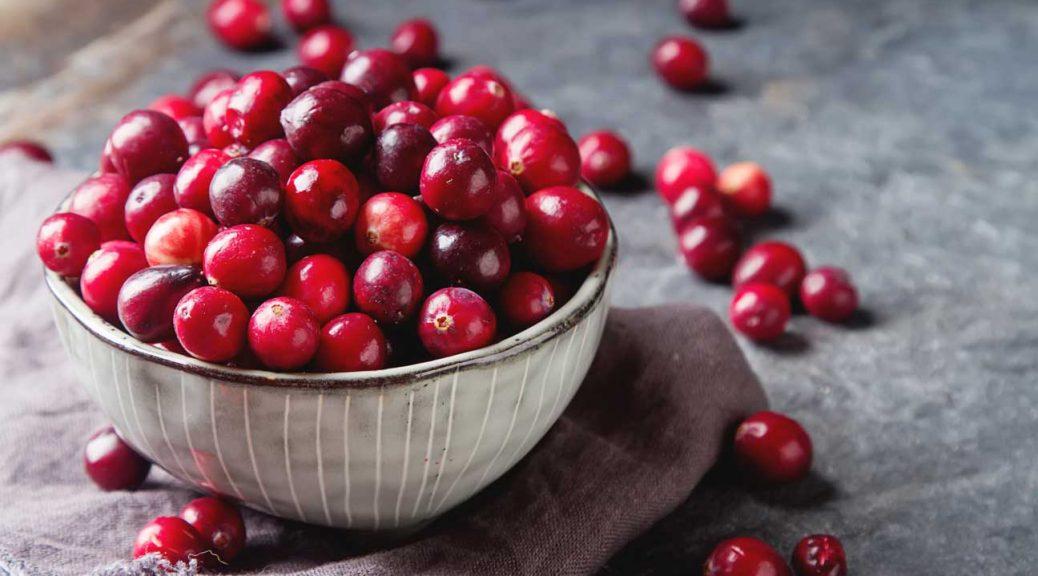 Cranberry là quả gì