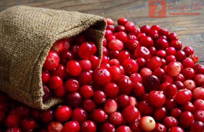 Cranberries là gì