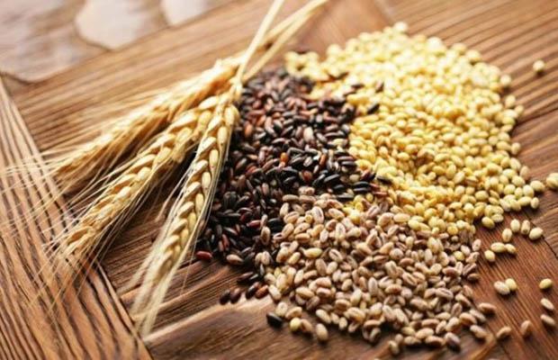 Grains là gì