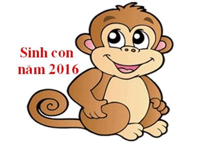 Năm 2016 là năm gì