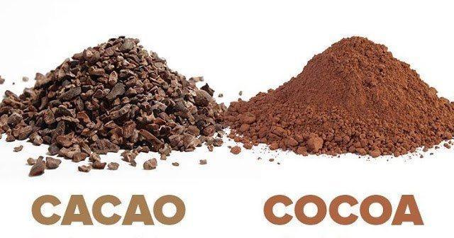 Cocoa là gì